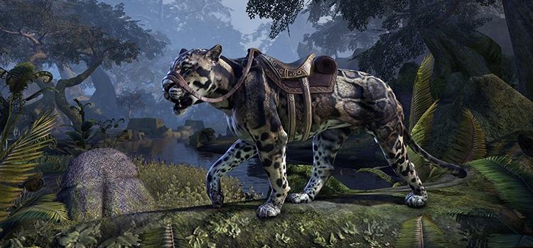 The Elder Scrolls Online: Der August sieht eine neue Katze, schicke Kostüme