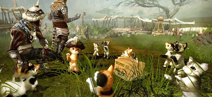 """ArcheAge setzt aufs Kätzchen-Schema: """"Oh, sind die süß"""""""