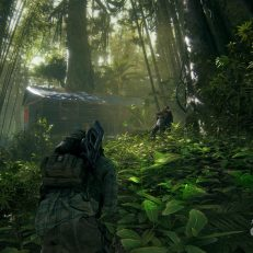 Ghost Recon Wildlands Wald