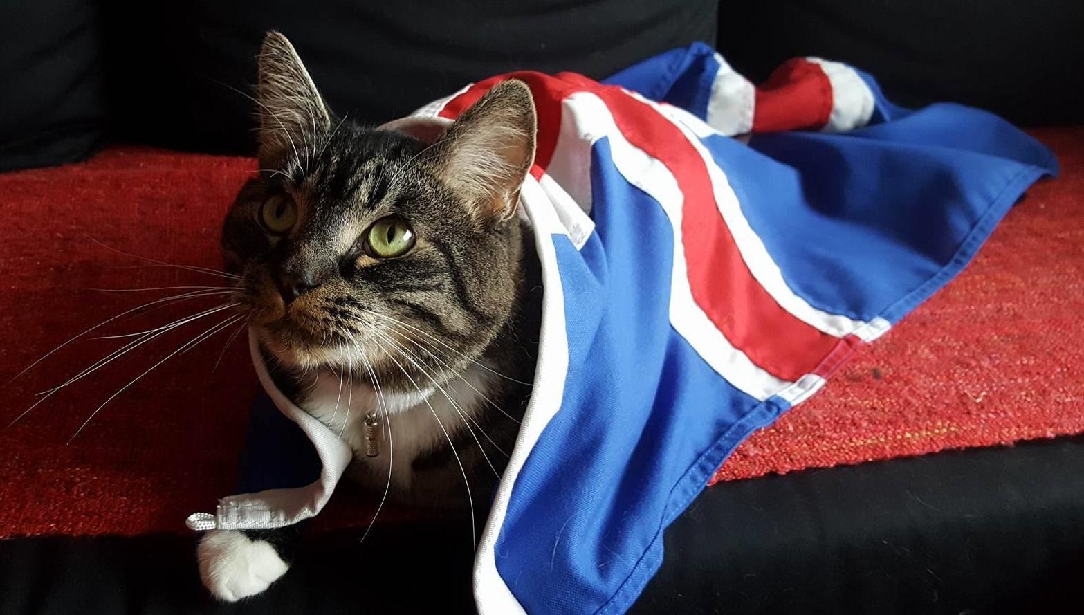 EM 2016: EVE Online feiert mit Island die historische Fußball-Sensation