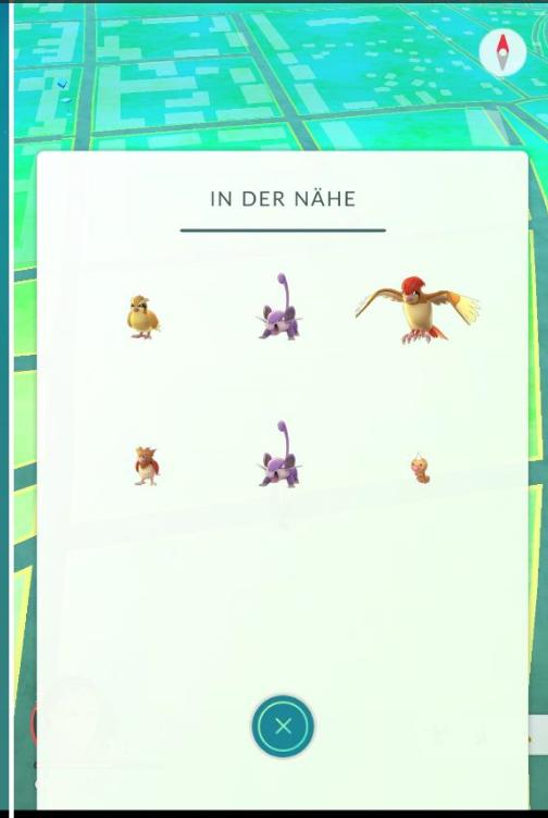 Pokemon Go Fußspuren