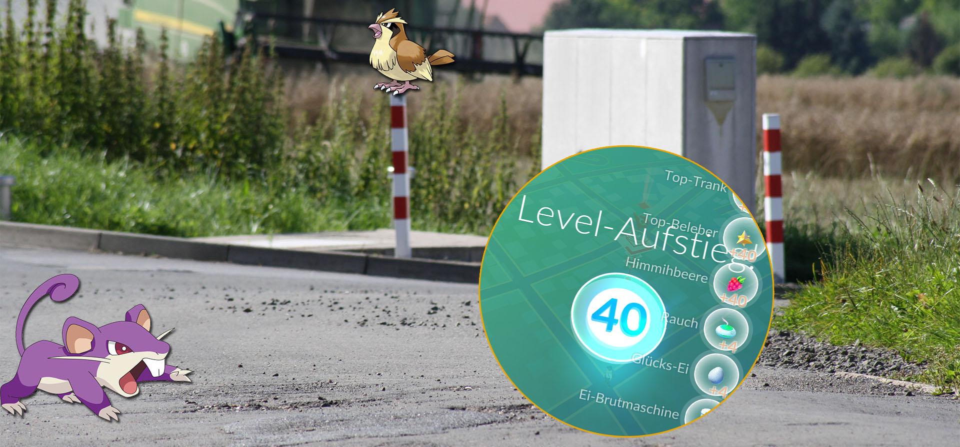 Pokémon GO Level-Rechner: Wie viele Jahre braucht Ihr bis Level 40?
