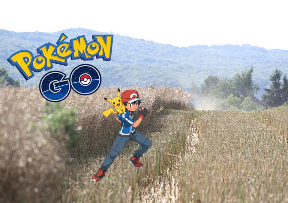 Pokémon GO: Weibliche Pikachu gesichtet! – Brachte der Patch die Geschlechter?