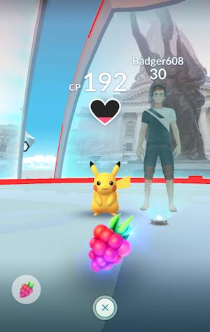 Pokémon GO Arena Beere
