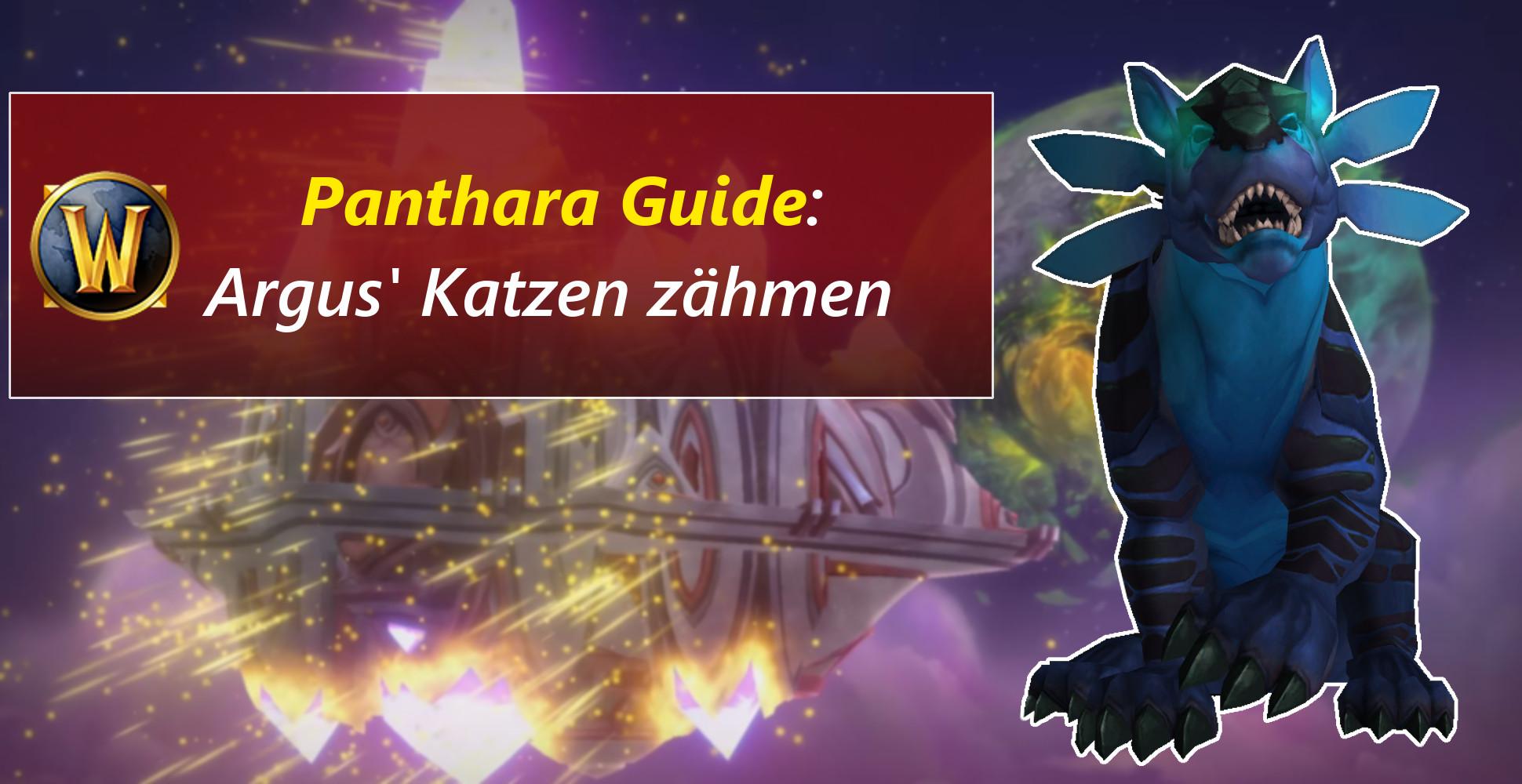 WoW Guide: So können Jäger die Panthara zähmen