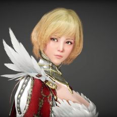 Black-Desert-Mobile-Elfe-Walkuere-01