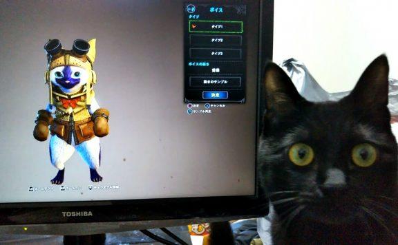 Monster-Hunter-Katze