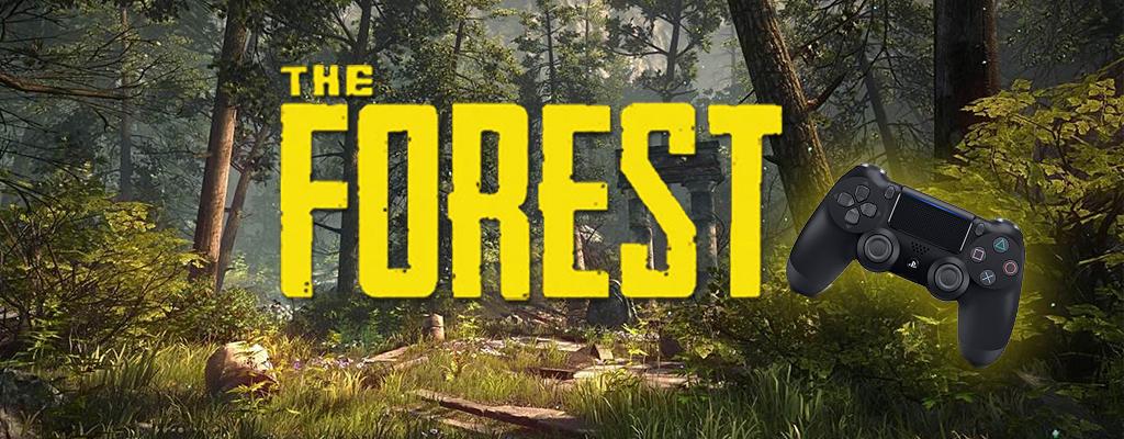 Endlich hat The Forest Release auf PS4 – vier Jahre nach erstem Trailer