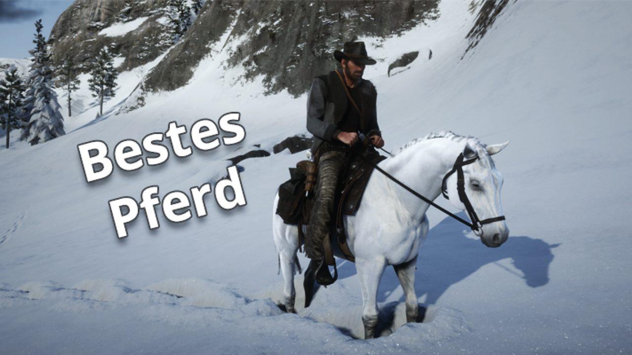 red dead redemption 2 pferd striegeln geht nicht