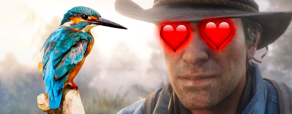 Darum feiert ein Vogelbeobachter Red Dead Redemption 2