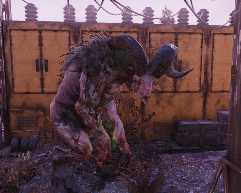 Fallout 76 echter Sheepsquatch