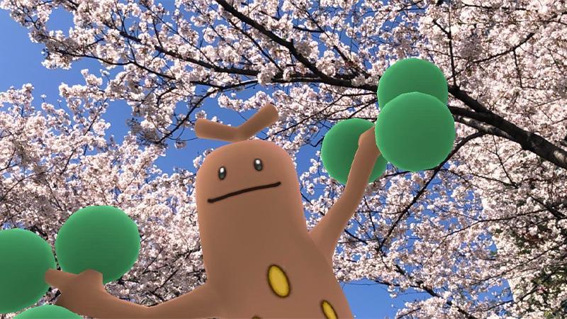 Pokémon GO Schnappschuss Mogelbaum