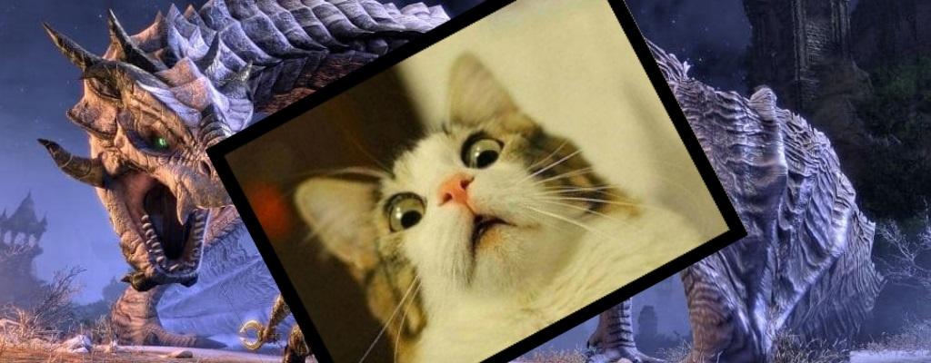 ESO: Im Release-Trailer zu Elsweyr fackeln Drachen arme Katzen ab