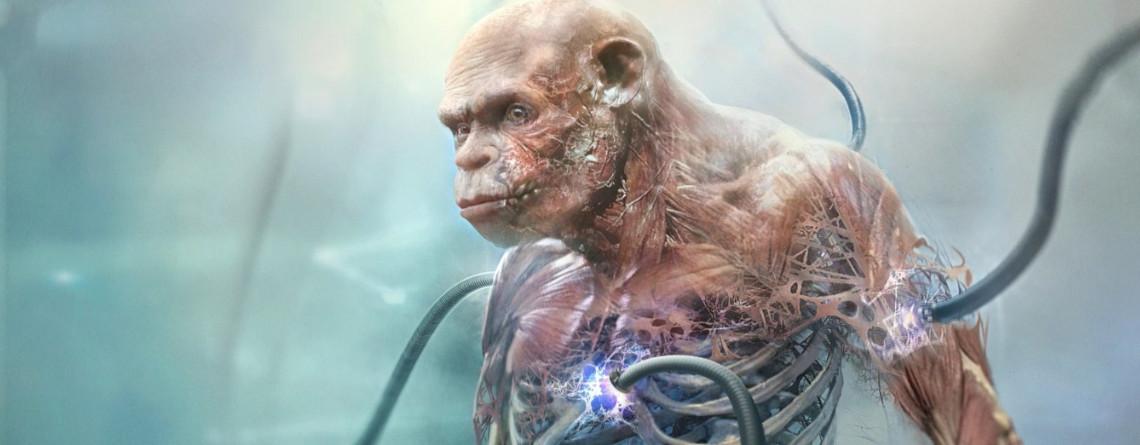 Neue Bilder aus Beyond Good & Evil 2 sehen richtig schaurig aus