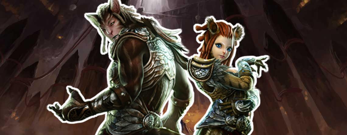 In diesem MMORPG spielt Ihr einen sehr erfolgreichen MMORPG-Spieler