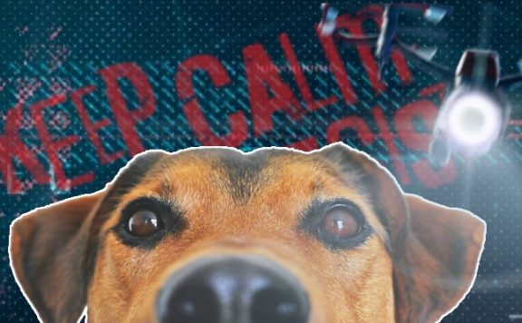 Watch Dogs Legion Keine Hunde