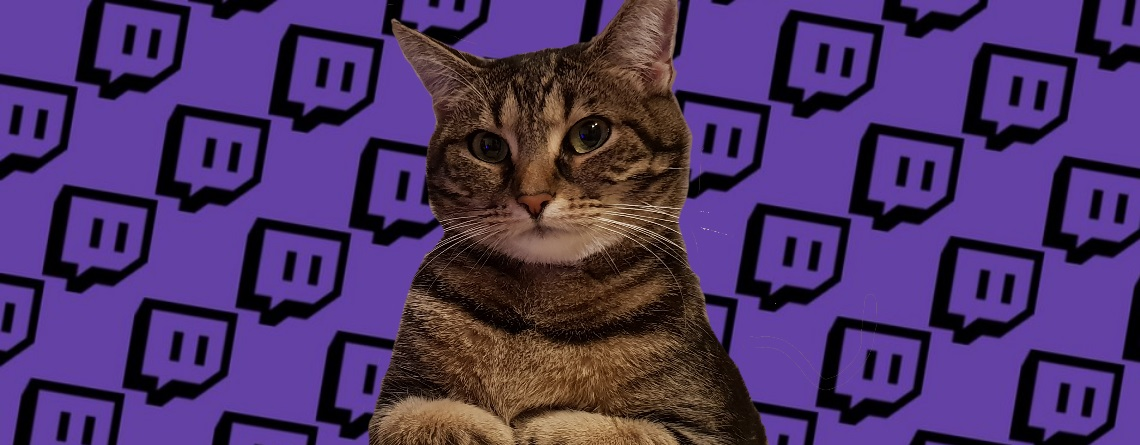 Twitch-Direktor würde gern Katzenwerferin bannen, aber bisher passiert nix