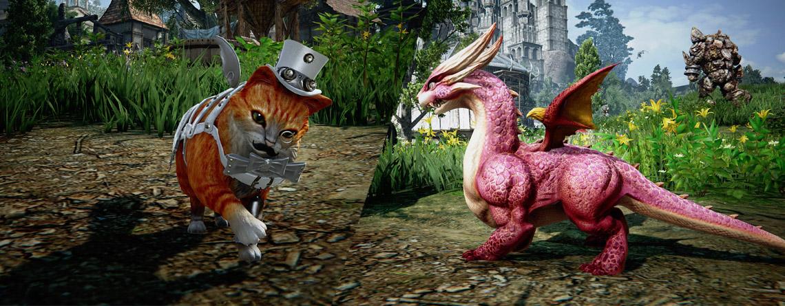 Das neue MMORPG Ascent: Infinte Realm bringt jetzt Pets und sie sind knuffig