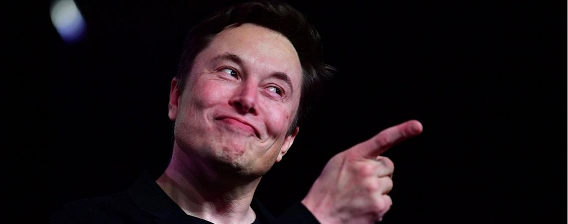 Fortnite-Streamerin sammelt Geld für neue Bäume – Elon Musk überbietet alle