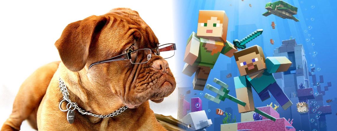 YouTuber bringt seinem Hund bei, wie man Minecraft spielt – Aber er ist echt schlecht