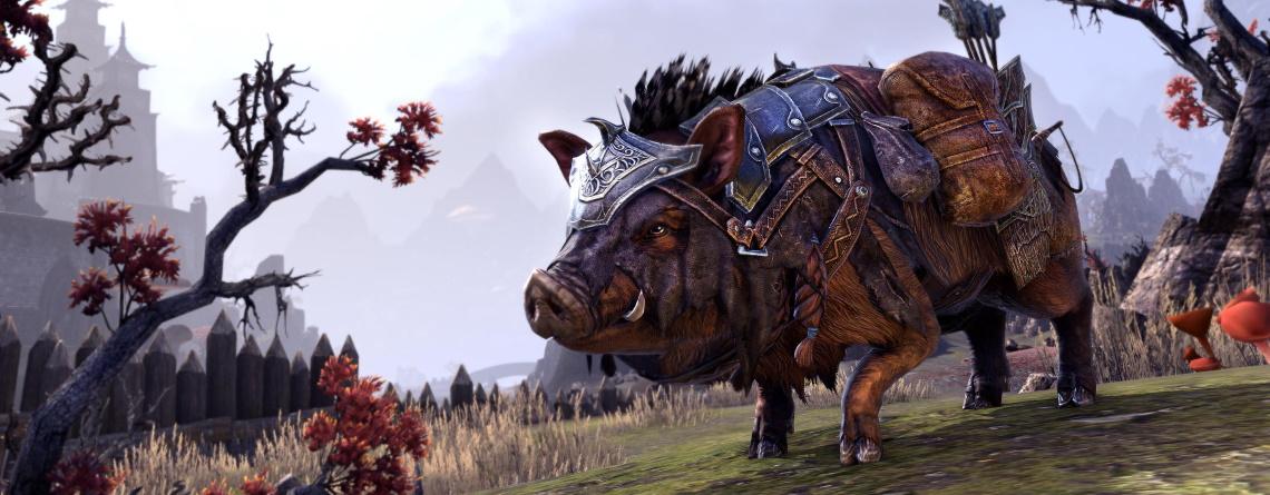 MMORPG ESO verkauft Schweine-Pet – Es vergrößert permanent das Inventar