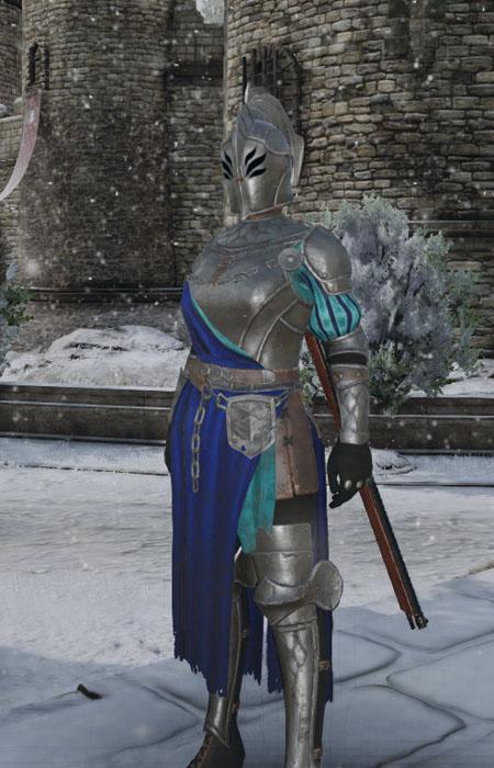 conqueror's blade paladin 2