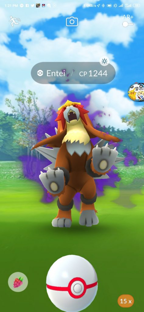 Crypto Entei