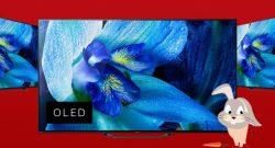 MediaMarkt Oster-Angebote: Sony KD-55AG8 OLED 4K TV