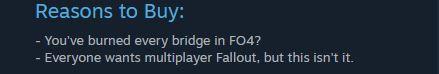 Fallout-Steam-Kritik