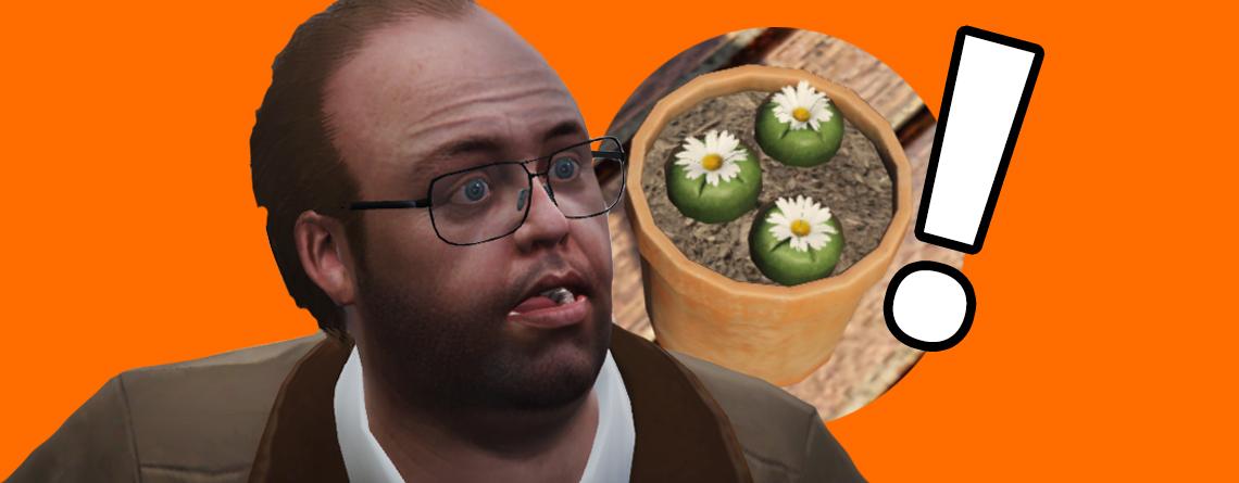 Vorsicht vor Peyote Pflanzen in GTA Online – Die klauen eure Waffen