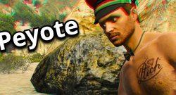 Nutzt jetzt die Peyote-Map in GTA Online für schnelle Level-Ups