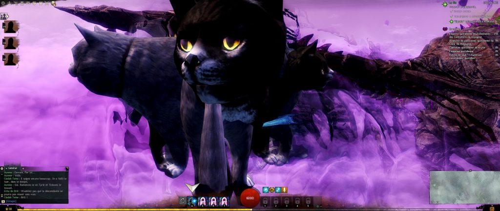 Guild Wars 2 Katzen Fehler reddit