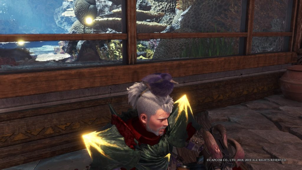 Monster Hunter World: Iceborne Flauschhuhn Hut Flor-Fest