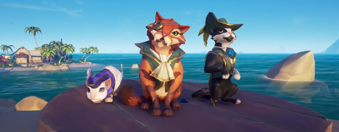 Beliebtes MMO setzt für Steam-Release auf süße Piraten-Kätzchen