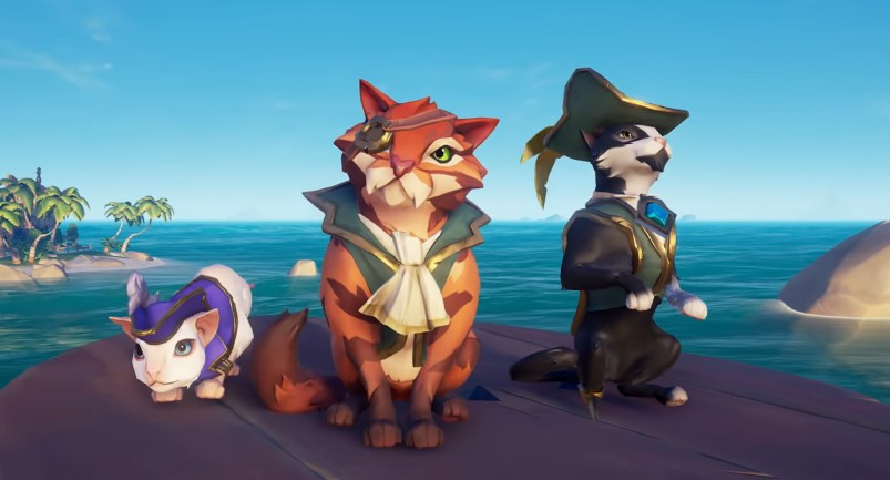 Sea of Thieves Katze Hut