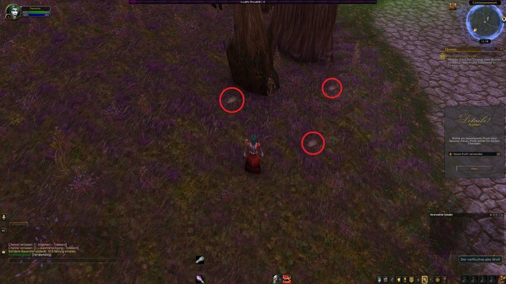 World of Warcraft Pamphlete FUndort 2