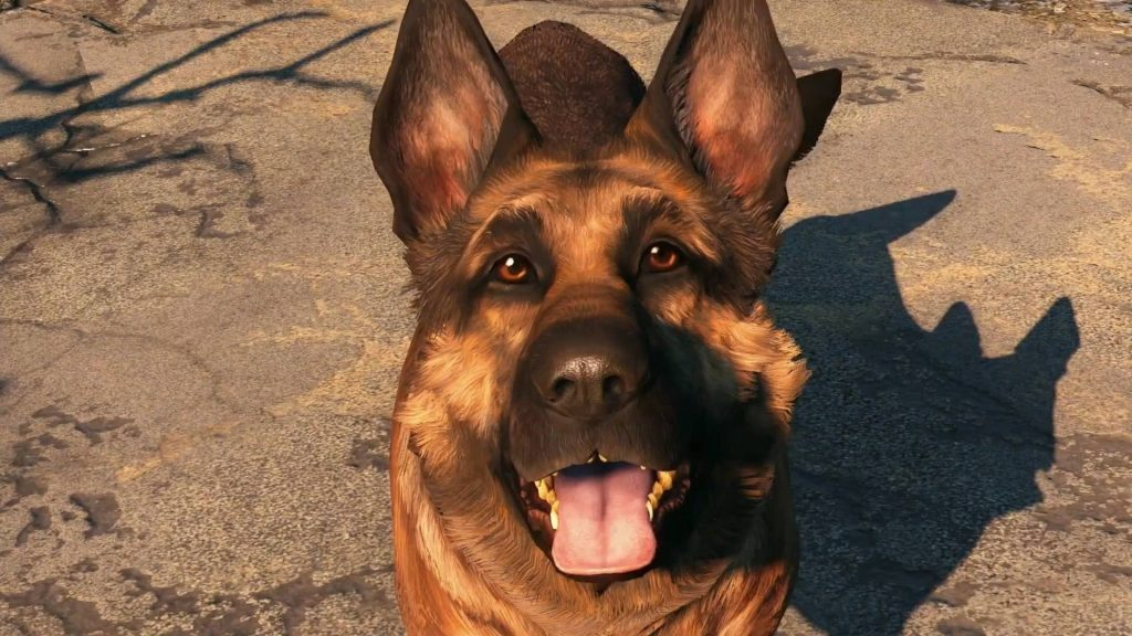 Viande de chien Fallout