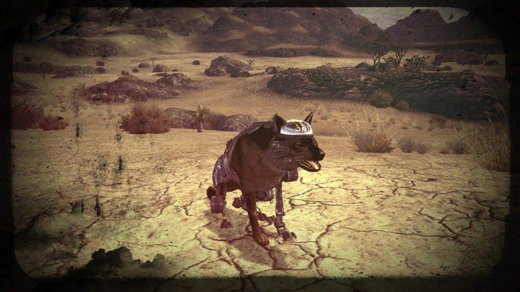 Fallout Rex