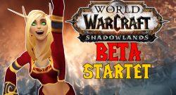 WoW Shadowlands: Die Beta startet! Alles, was ihr wissen müsst