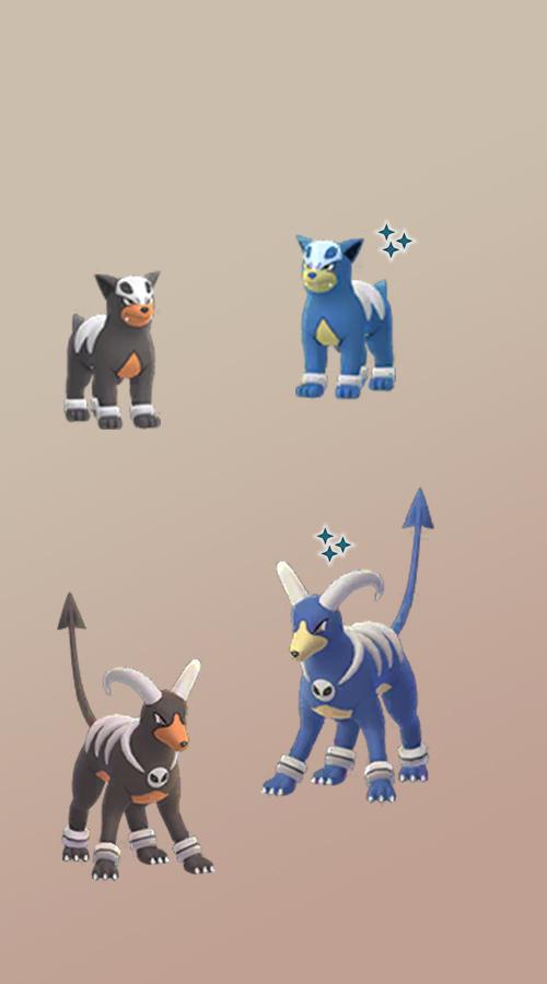 Pokémon GO Shiny Hunduster