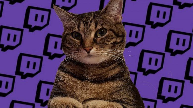 Twitch lässt gebannte User jetzt in eigenem Kanal weitertrollen – Streamer finden's doof