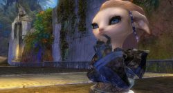 Guild Wars 2 Asura Glenna Thinking
