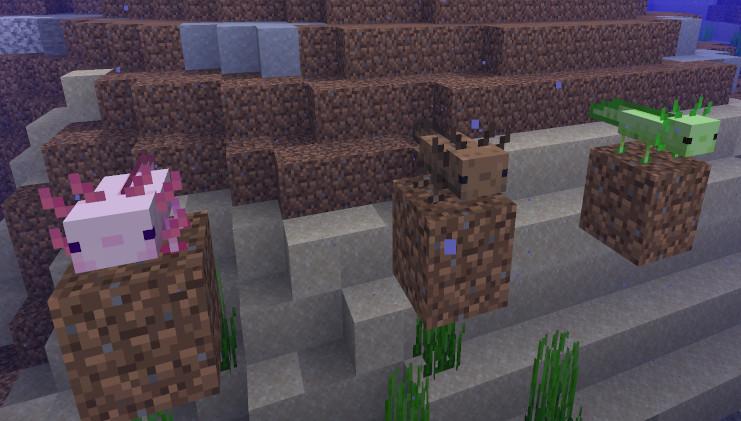 Minecraft Axolotl Farben