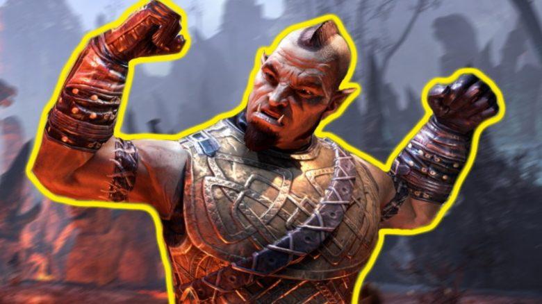 Was braucht ESO, um als NextGen-MMORPG zu bestehen? Wir haben Spieler gefragt