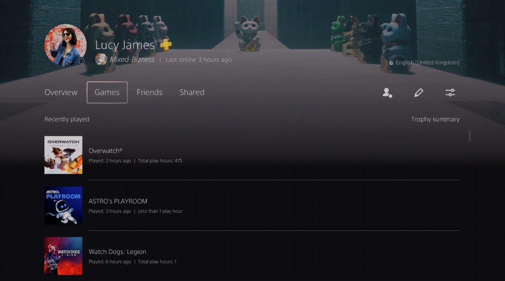 PS5 Spieler-Profil