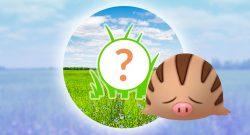 Pokémon GO Quiekel Rampenlicht Titel