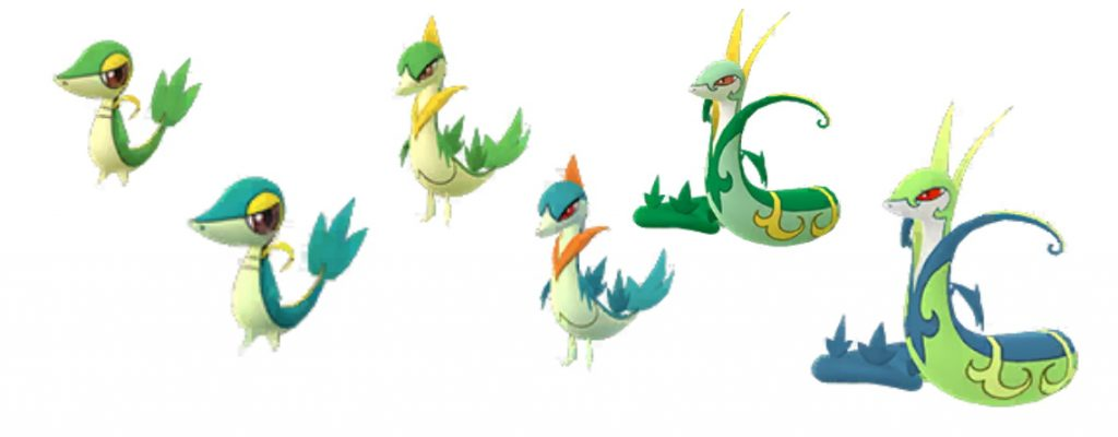 Shiny Serpifeu Pokemon GO