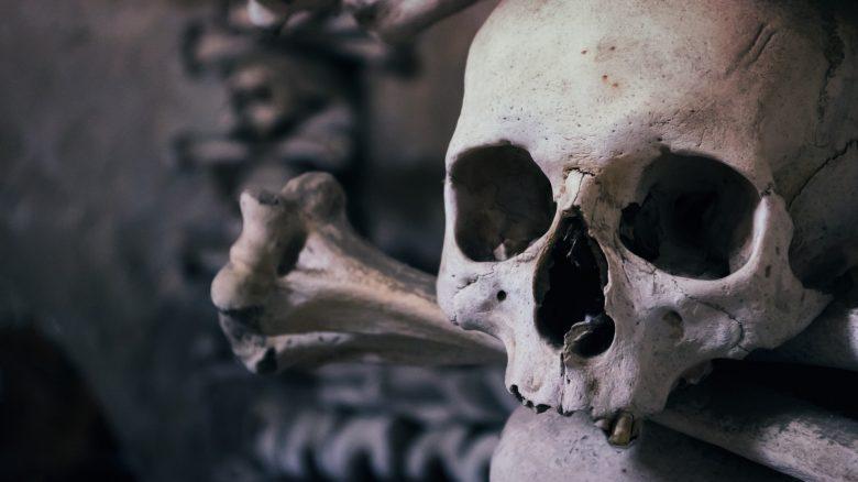 """Neues Horrorspiel zeigt, wie ein MMO stirbt – Ist """"unerträglich real"""""""