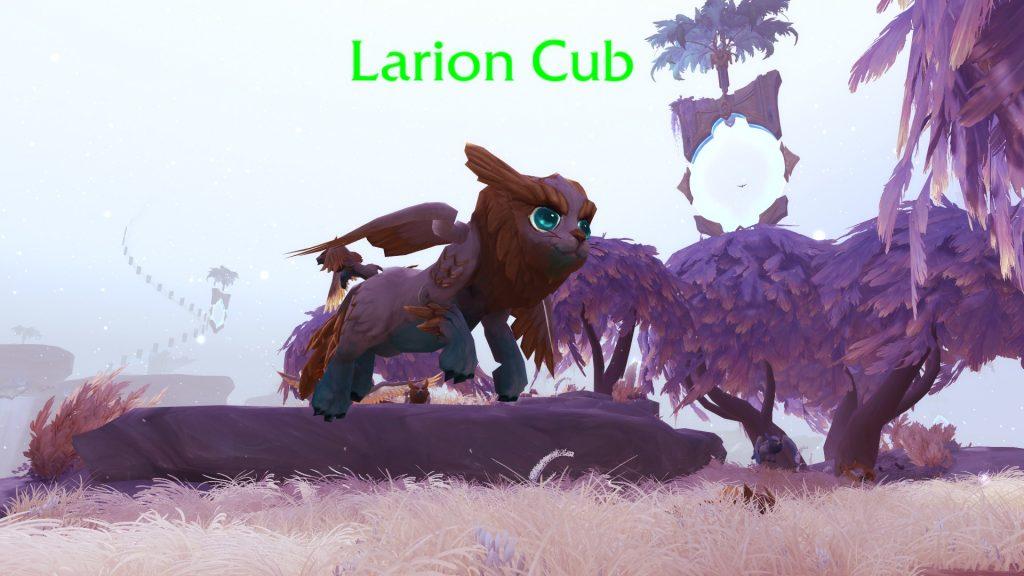 WoW Larion Cub