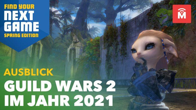 Guild Wars 2 zeigt Pläne für 2021: Bringt 4 große Neuerungen bis zur Erweiterung